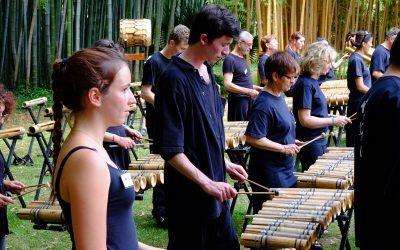 Les pousses du Bamboo – Dimanche 4 juin